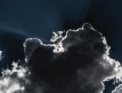 Capital losses and Covid-19 – a silver lining in the cloud?