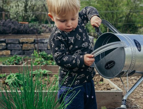 7 useful strategies for teaching your children how to manage money